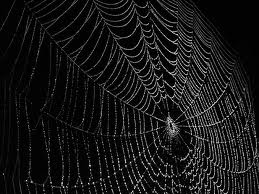 The Writer's Web.