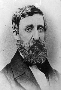 The Guru of the Woods, Thoreau