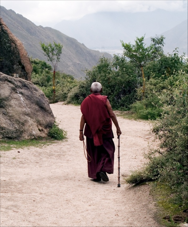 Monk with Cane